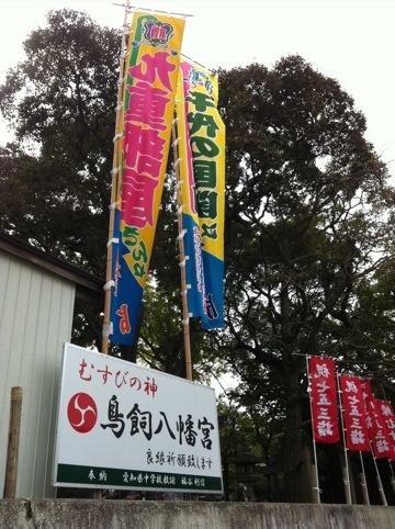 20111108-100104.jpg